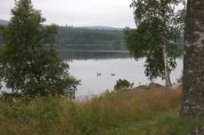 Mot Umeå 08