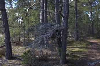Gålö_060