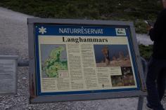 Langhammars